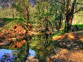 Wombelong Creek in the Warrumbungles 005