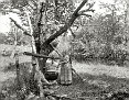 "1900 | ""A bit of country life near Henryville, Pennsylvania — making soap"""