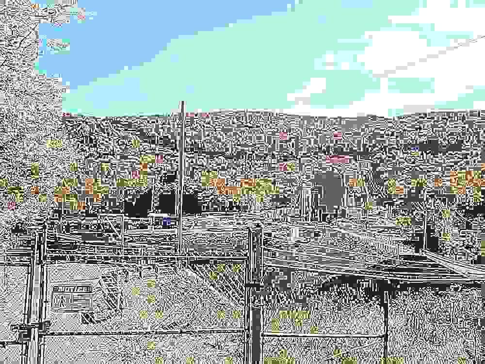 DSCF0241vivi-vi.jpg