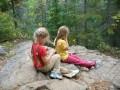 Beaver trail, Algonquin Park