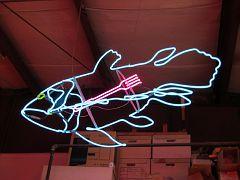 Neon - Flektro Studios06