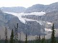 Banff-Crowfoot Glacier1