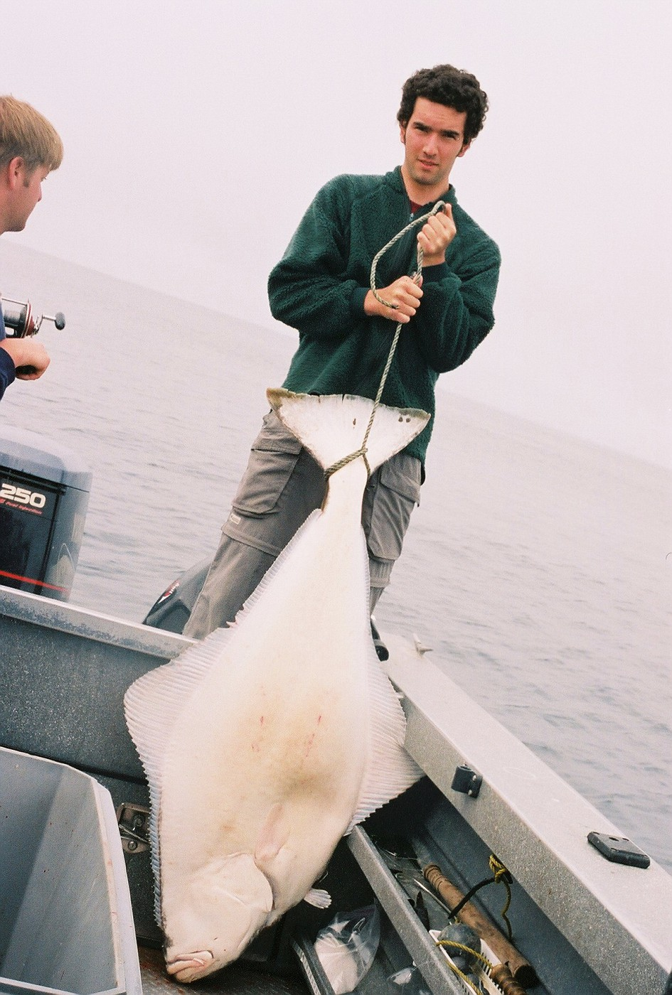 Nice size halibut