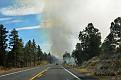 Skogsbrand längs vägen, men det var en kontrollerad bränning.