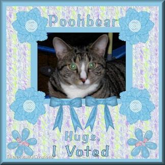 poohbeartjcI Voted