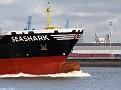 SEASHARK 20100920 008