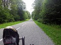 Route forestier