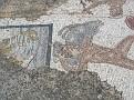 kreta cycladen 2288