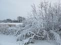 sneeuw2 006