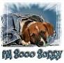 1I'm Sooo Sorry-blujeanpup-MC