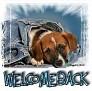 1WelcomeBack-blujeanpup-MC