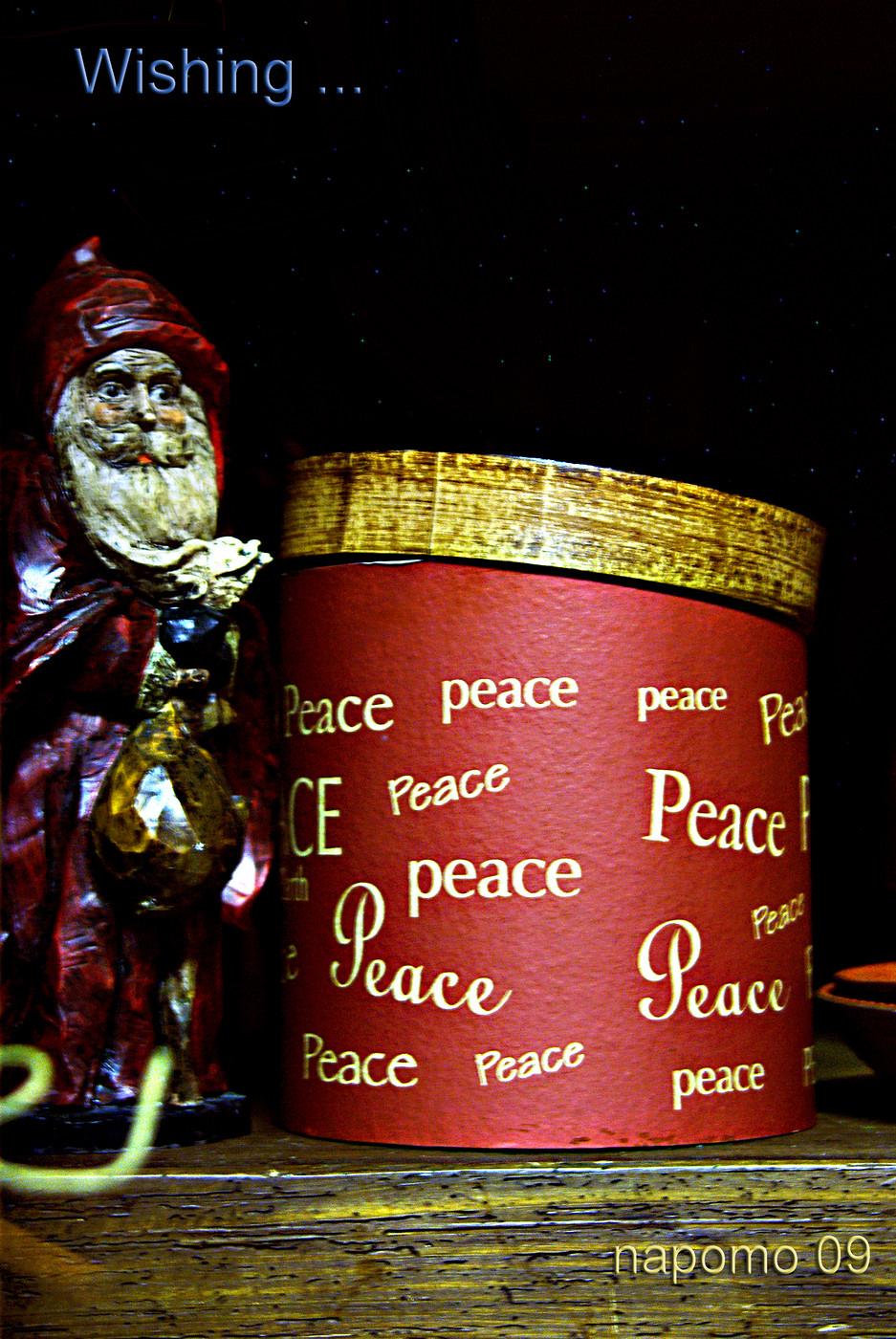 IMGP2034 peace xmas 09