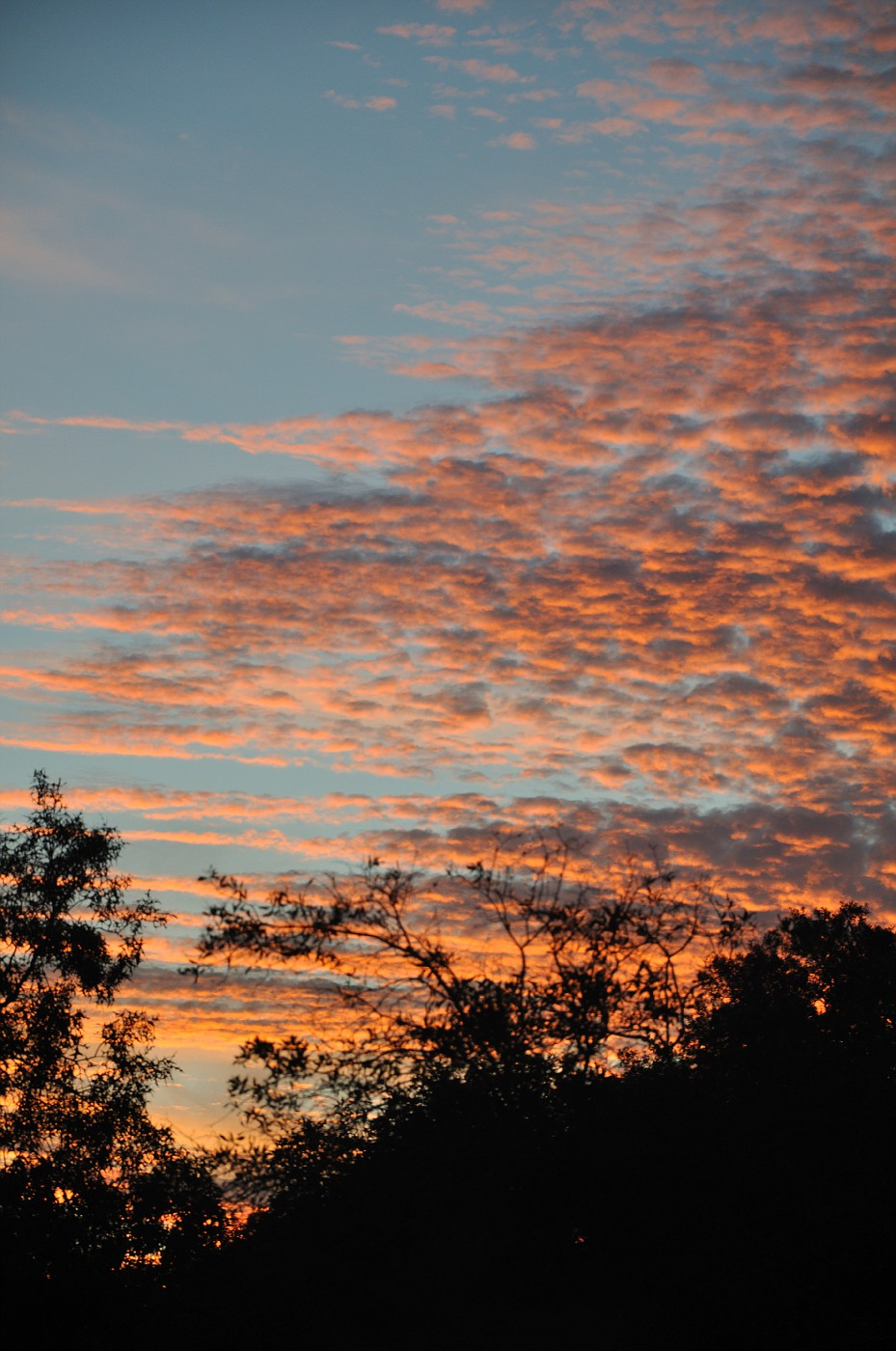 sunset home spring hill florida 058