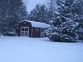 Snow Storm 1-30-2010 (35)