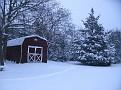 Snow Storm 1-30-2010 (37)