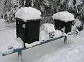 Snowstorm 2-6-2010 (104)