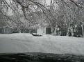 Snowstorm 2-6-2010 (2)