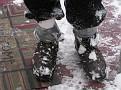 Snowstorm 2-6-2010 (75)