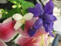 Flower Service 059