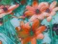 Sharp-lobed Hepatica (Hepatica acutiloba)