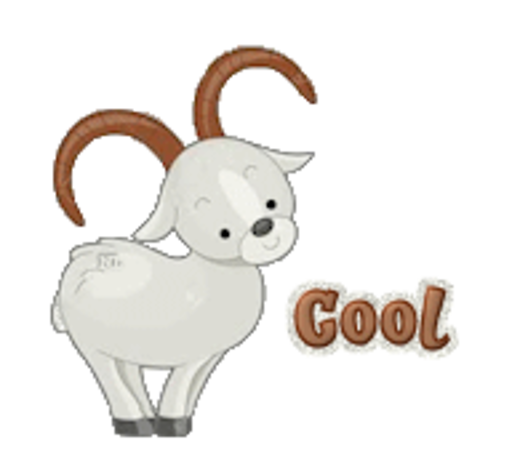 Cool - BighornSheep