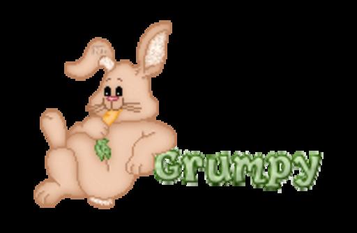 Grumpy - BunnyWithCarrot