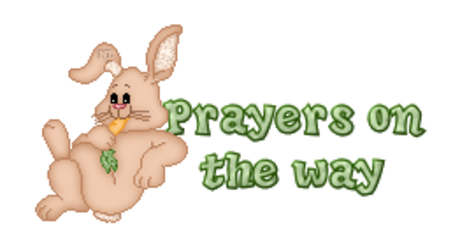 Prayers on the way - BunnyWithCarrot