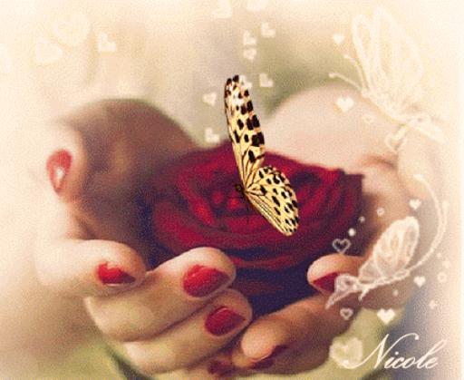 Nicole - ButterflyRose-LD