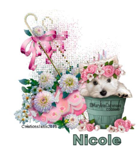 Nicole - CJUmbrellachalndog