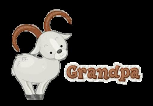 Grandpa - BighornSheep