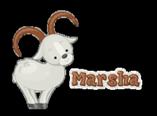 Marsha - BighornSheep