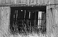 Shadowed Barn Interior #3