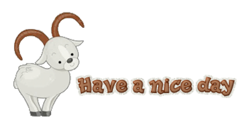 Have a nice day - BighornSheep