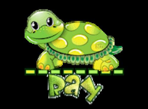 Ray - CuteTurtle