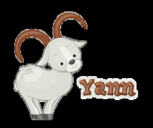 Yann - BighornSheep