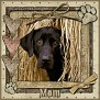 dcd-Mom-In The Hay