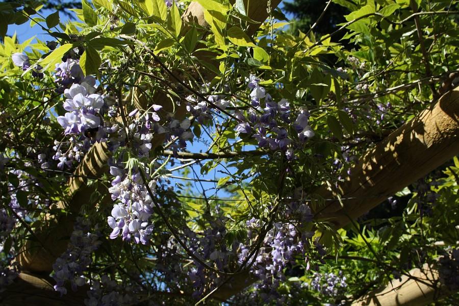 http://images54.fotki.com/v461/photos/2/243162/8781169/img391-vi.jpg