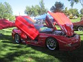 Wurst Car Show 070