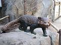061125 Zoo 1018