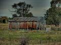 Mumbil Farm 007