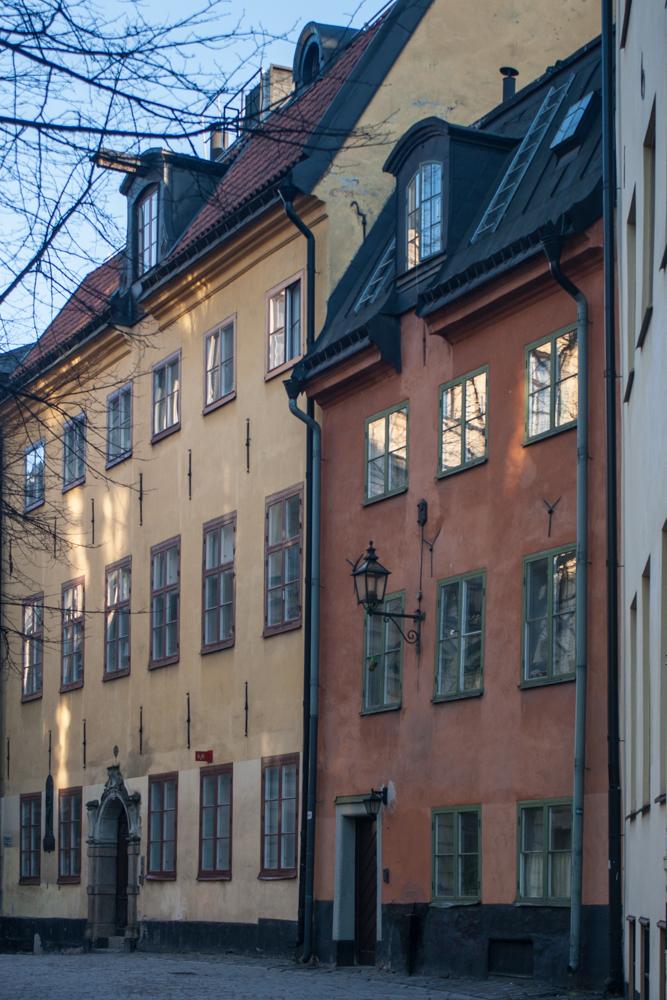 hunvakt stockholm