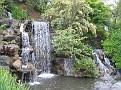 LA Arboretum - Meyberg Waterfall06