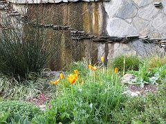 Descano Gardens05