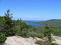 Maine - Acadia - Bubble Summit4