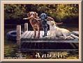 dogshavingfuntjcAuntie