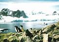 Peterman Island