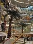 Atrium Oceana 20080419 016