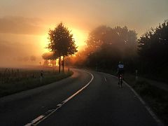 Neblige Sonne in Fischbeck