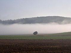 Hagenohsen