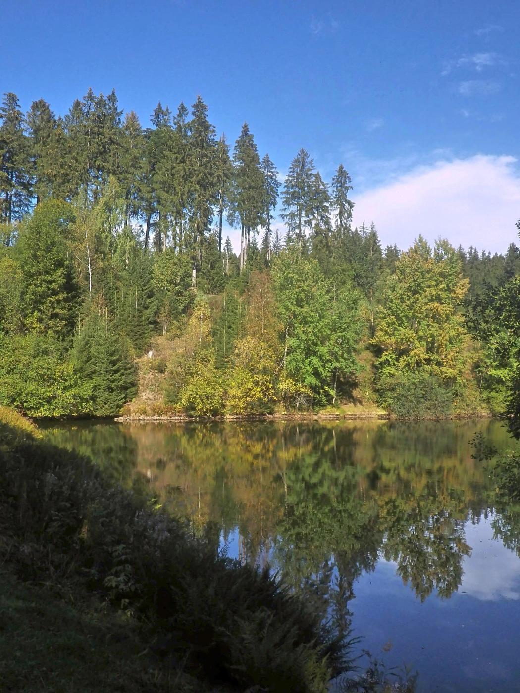 Oberer Spiegeltaler Teich